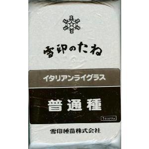 イタリアンライグラス種 普通種 1kg [牧草種子 コモン種]
