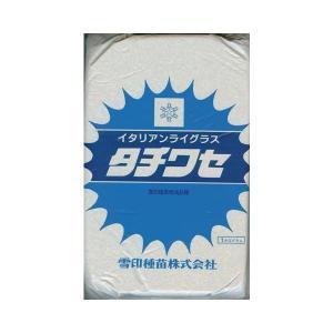 イタリアンライグラス種 タチワセ (1kg) 【雪印種苗】 [牧草種子]