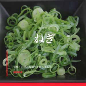 業務用カットねぎ 福岡県産1kg