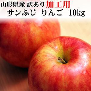 サンふじ りんご 加工用 訳あり 山形県産 10kg ポイン...
