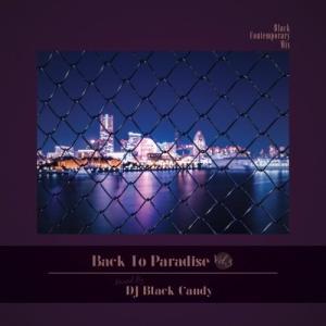 【洋楽CD・MixCD】Back To Paradise Vol.3 / DJ Black Candy[M便 2/12] mixcd24
