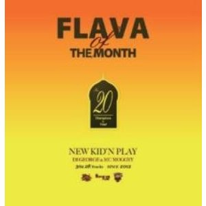 【洋楽 MixCD・洋楽CD】Flava Of The Month Vol.20 / New Kid...