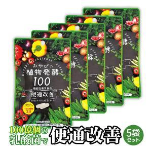 送料無料 酵素サプリメント みやびの植物酵素サプリ100 5袋セット|miyabi-store