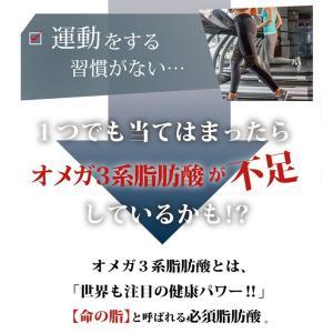 DHA&EPAオメガプラス オメガ3サプリ 120球|メール便なら送料100円|DHA EPA サプリメント|miyabi-store|04