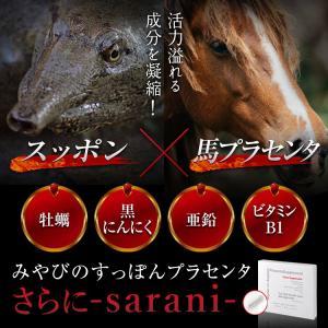 みやびの すっぽん プラセンタ さらに-sarani- 2箱セット|miyabi-store