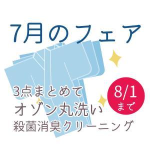 殺菌 消臭 オゾン 丸洗い まとめておトク 着物 帯 長襦袢など 3点 着物類なら何でも 組み合わせ自由 高品質クリーニング 期間限定 st354|miyagawa-kimono