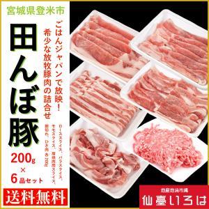 田んぼ豚 200g 6品 ローススライス バラスライス モモスライス 肩焼肉用スライス 細切れ ひき肉 登米 宮城 テレビ miyagi-chisanchisho