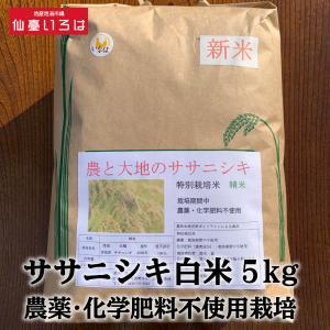 ササニシキ白米5kg農薬・化学肥料不使用栽培 miyagi-chisanchisho