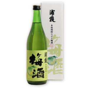 浦霞 本格焼酎につけた梅酒 720ml|miyagimarugoto