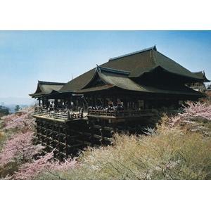 旅する日本【清水寺】絵はがき ポストカード|miyakobiyori