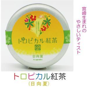 トロピカル紅茶(日向夏):4943341009645|miyazakikonne