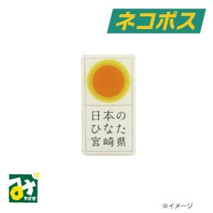 ネコポス ひなたピンバッチ えらべる個数1個〜10個まで 送料込 miyazakikonne