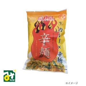 元祖辛麺 辛麺屋 桝元 カレー×辛麺 生麺スープ付 一食入 桝元 miyazakikonne