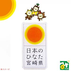 宮崎県 ひなた ひなたピンバッチ 2600000001090|miyazakikonne