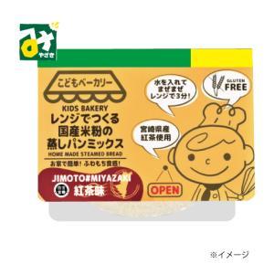 レンジでつくる国産米粉の蒸しパンミックス 紅茶味 宮崎県 100g 合同会社カラープラス 簡単 4570063850202 miyazakikonne