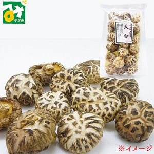 宮崎カネキ食品【天白】:4905061061747|miyazakikonne