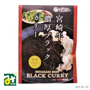 カレー 宮崎牛濃厚ブラックカリー ばあちゃん本舗|miyazakikonne