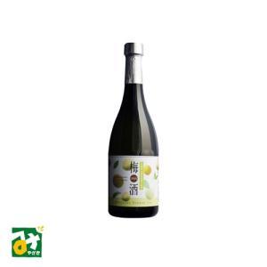 リキュール 酒谷川 梅酒 10度 300ミリリットル 松の露酒造|miyazakikonne