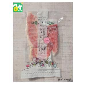 豚 生ジャーキー 日向おさつポーク しっとり生ジャーキー プレーン 冷凍 常温品冷蔵品との同梱不可 栗山ノーサン|miyazakikonne
