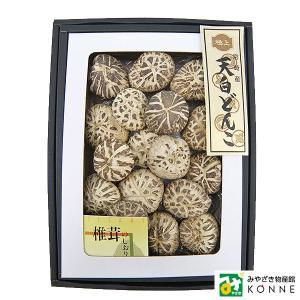 宮崎県産乾椎茸 天白どんこ (TD-35):4905061062690|miyazakikonne