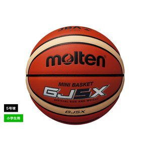 molten モルテン BGJ5X 検定球 12枚パネル ミニバスケットボール 5号球