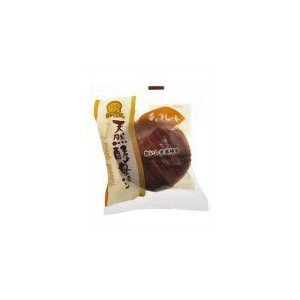 天然酵母パン チョコレート【デイプラス】12個|mizota