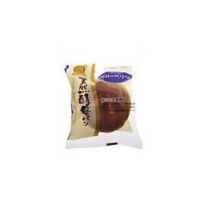 天然酵母パン ブルーベリー味【デイプラス】12個|mizota