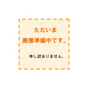 ゲゲゲの鬼太郎 ゲゲゲフィギュアコレクション|mizota