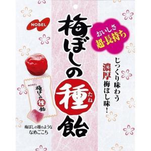 梅ぼしの種飴 30g×6袋 袋タイプ【ノーベル製菓】じっくり味わう濃厚梅ぼし味 熱中症対策にも