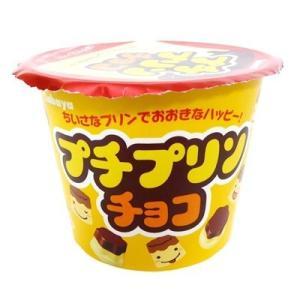 プチプリンチョコ【カバヤ】12個入り1BOX|mizota