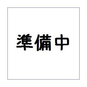 バンダイ (仮)ポケモン モーションギャラリー 12個入り1BOX|mizota