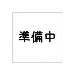 (仮)仮面ライダーゴースト SGゴーストアイコン5 バンダイ(8個入り1BOX) mizota