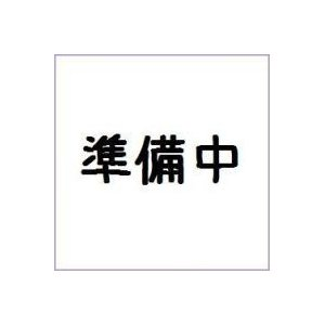 (仮)宇宙戦隊キュウレンジャー ミニプラ05 バンダイ(12個入り1BOX) mizota
