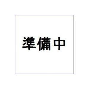 (仮)ポケモンキッズサン&ムーン ソルガレオ編 バンダイ(12個入り1BOX) mizota