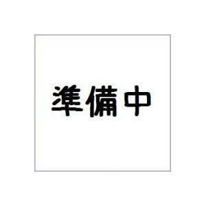 (仮)仮面ライダービルド SGフルボトル05 バンダイ(10個入り1BOX) 2018年1月発売予定|mizota