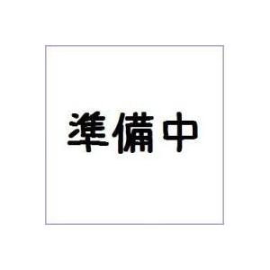 CONVERGE KAMEN RIDER 9 バンダイ(10個入り1BOX) mizota