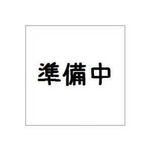 FW GUNDAM CONVERGE ♯11 バンダイ(10個入り1BOX)|mizota