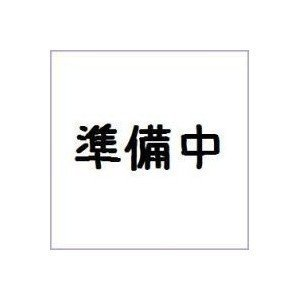 (仮)装動 仮面ライダージオウ RIDE4 セット バンダイ|mizota