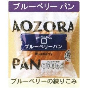 青空製パン 発芽玄米入り ブルーベリーパン 12個|mizota