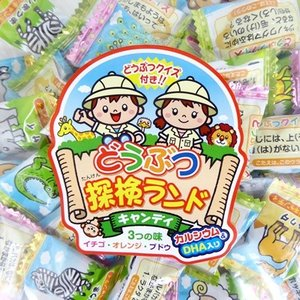 業務用 1kg入 どうぶつ探検ランドキャンディ 1キロ マルエ製菓 約220粒前後入り|mizota
