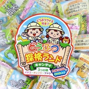 業務用 1kg入 どうぶつ探検ランドキャンディ 1キロ×10袋 マルエ製菓 1袋約220粒前後入り|mizota