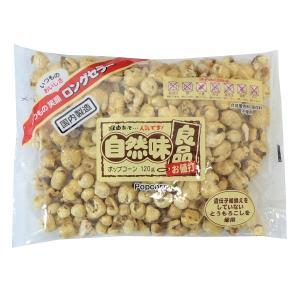 自然味良品 ポップコーン 120g×1袋 南国製菓|mizota