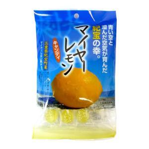 マイヤーレモンキャンディ 100g×10袋  松屋製菓 三重県紀宝町産 熱中症対策に