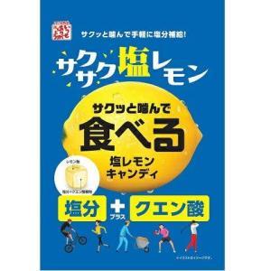 食べる塩レモンキャンディ 80g 松屋製菓 塩レモン 塩分+クエン酸 熱中症対策に|mizota