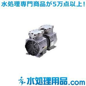イワキポンプ ピストン式エアーポンプ PAP型 PAP-S34|mizu-syori