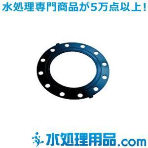 エスロン フランジ用ガスケット 全面パッキン FKM  JIS10K 125A EP-AFJ10-125|mizu-syori