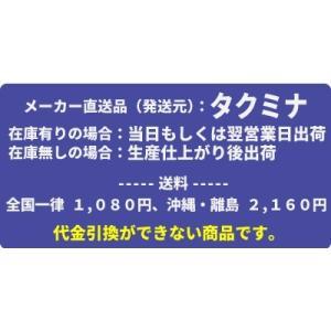 タクミナ ソレノイド駆動式ダイヤフラム定量ポンプ アナログ入力タイプ PWM-200-VTCE-HWJ|mizu-syori|03