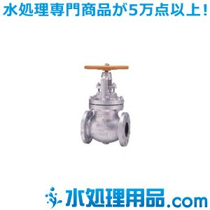 キッツ 鋳鋼バルブ グローブ 10SCJS型 2.5インチ(65A) 10SCJS-2.5|mizu-syori
