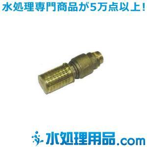 ケルヒャー フィルター 自吸用ホース先端用 逆止弁付き 4.730-012.0|mizu-syori