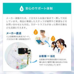 高純度精製水(純水) 大容量 5L入り コックなし 4箱まとめ買い 紫外線殺菌処理 送料無料 メーカー:サンエイ化学|mizu-syori|11